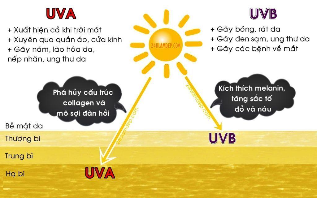 uva, uvb, uvc là gì